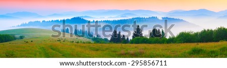 Panorama of the summer morning in the foggy Carpathian mountains. Borzhava ridge, Transcarpathian, Ukraine, Europe. - stock photo