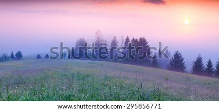 Panorama of the summer morning in the foggy Carpathian mountains. Borzhava ridge, Transcarpathian, Ukraine, Europe. - stock photo