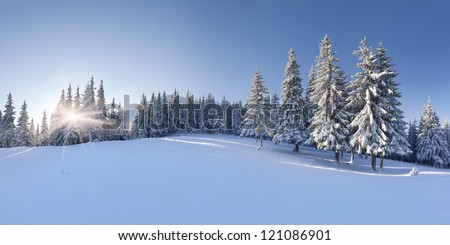 Panorama of the winter morning in the mountains - stock photo