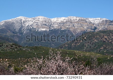 panorama of Topa Topa Mountains in Ojai with a farm in the foreground - stock photo