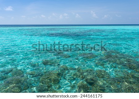 Panorama of tropical island resort. Clear turquoise ocean seen corals. - stock photo