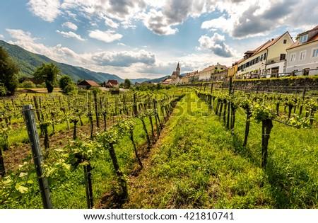 Panorama of Wachau valley, World Heritage Site (UNESCO) - stock photo