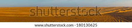Panorama of Wahiba desert in Sultanate Oman - stock photo