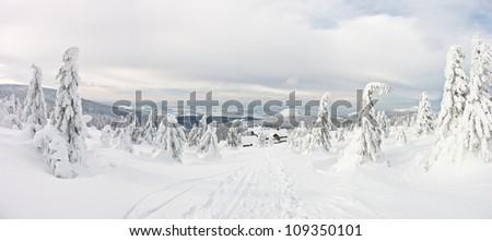Panorama on the Snieznik Mountain slope, Poland - stock photo