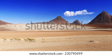 """Panorama shot of the """"Salvador Dali desert"""" in the highlands of Bolivia - stock photo"""