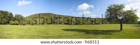 panorama with apple tree and green grass - stock photo