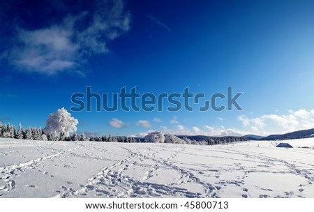 panorama with winter landscape in Black Forest