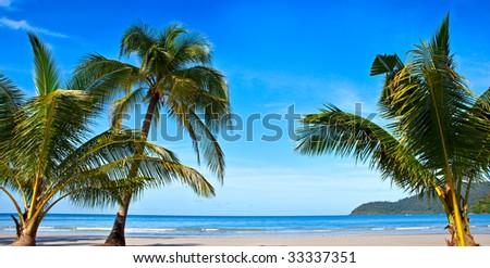 Panoramic beach - stock photo