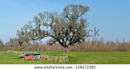 Panoramic Chalmette Battlefield blank space - stock photo