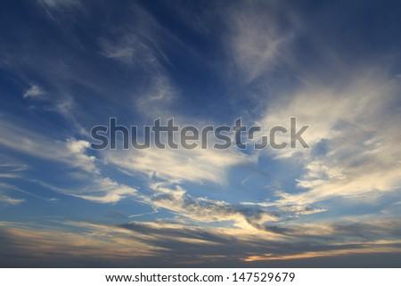Panoramic dramatic blue sky and golden light - stock photo