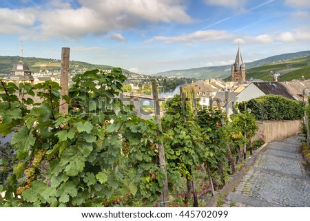 Panoramic HDR scene of the Moselle Valley above Berncastel-Kues with grape vines.