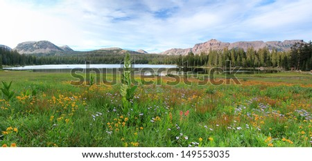 Panoramic landscape in the Uinta Mountains, Utah, USA. - stock photo