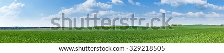 Panoramic meadow. Summer good weather - stock photo