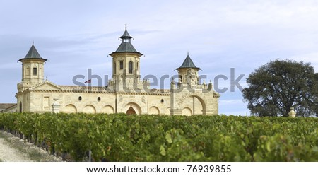 Panoramic of the Chateau cos d'Estournell - stock photo