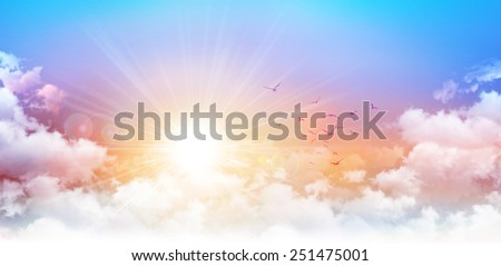 Panoramic sunrise. High resolution morning sky background. Rising sun and birds breaking through white clouds - stock photo