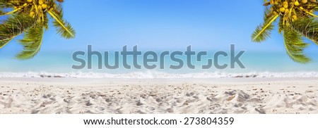 Panoramic view: coconut palm trees, sandy beach, ocean and perfect sky. - stock photo