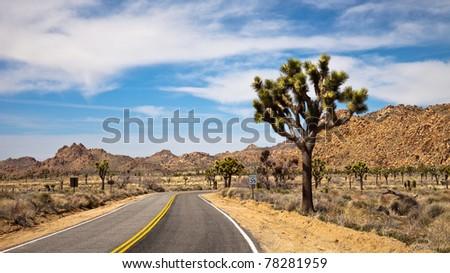 Panoramic view of a desert road in Joshua Tree National Park, California. - stock photo
