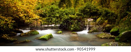 panoramic view of a stream into the wood in autumnal colors - stock photo