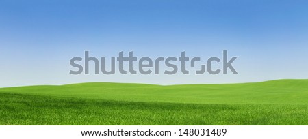 Panoramic view of an empty green field with copy space - stock photo