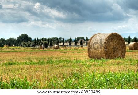 Panoramic view of Assisi. Umbria. - stock photo