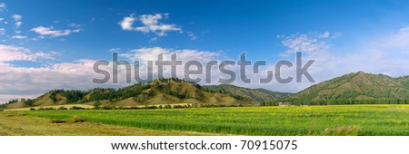 Panoramic view of beautiful green field in the Altai mountains