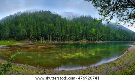 Panoramic view of beautiful lake in mountains. Spruce forest in cloudy weather reflected in turquoise crystal clear water. Lake Synevir in the Carpathians. Ukraine.