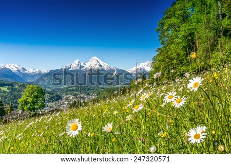 Panoramic view of beautiful mountain landscape in the Alps with green mountain pastures with flowers and snow capped mountains in the background in springtime - stock photo