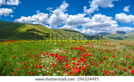 Panoramic view of beautiful summer landscape at Piano Grande (Great Plain) mountain plateau in the Apennine Mountains, Castelluccio di Norcia, Umbria, Italy - stock photo