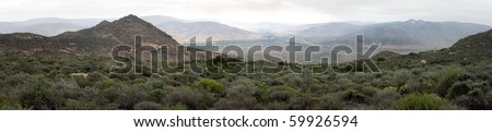 Panoramic view of bushes and mountains - stock photo