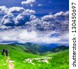 Panoramic view of Carpathians - summer meadow in mountains