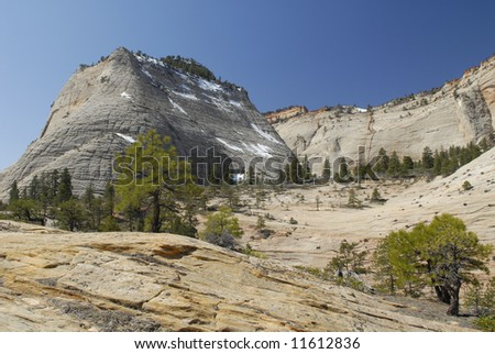 Panoramic view of Cathedral Mountain in Zion National Park, Utah - stock photo