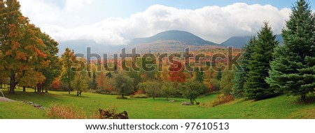 Panoramic view of colorfull forest - autumn - stock photo