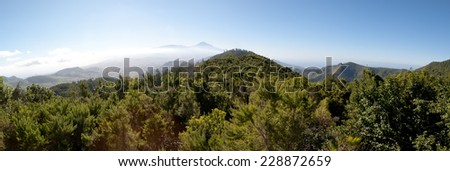 Panoramic view of El Teide Volcano Mountain through clouds and Pine Forest with Blue Sky - Tenerife, Canary Islands, Spain - stock photo