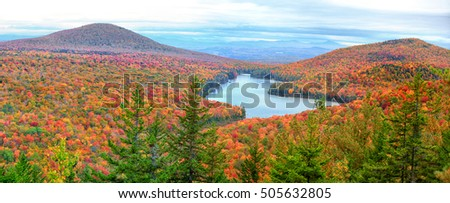 Panoramic view of Groton national forest in Vermont