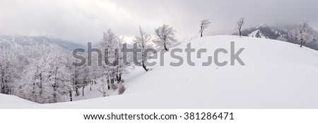 panoramic view of hilly landscape covered by frosted forest - Great Fatra