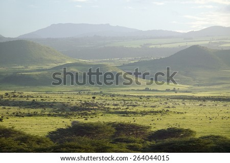 Panoramic view of Lewa Wildlife Conservancy after much rain in North Kenya, Africa