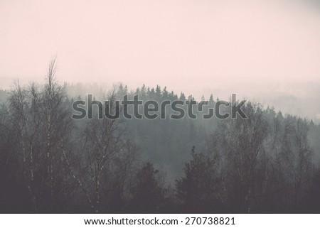 panoramic view of misty rain forest. far horizon - retro vintage film effect - stock photo