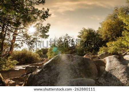 panoramic  view of nice summer sunny  mountain - stock photo