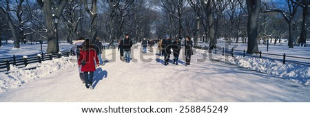 Panoramic view of pedestrians walking on fresh snow in Central Park, Manhattan, New York City, NY on a sunny winter day - stock photo