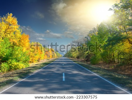 Panoramic view of road with trees on a sunny day in autumn  - stock photo
