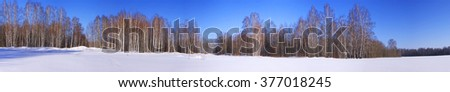 Panoramic view of snowy fields and birch forest in winter - stock photo