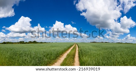Panoramic view of summer field with green oats, dirt road and blue cloudy sky - stock photo