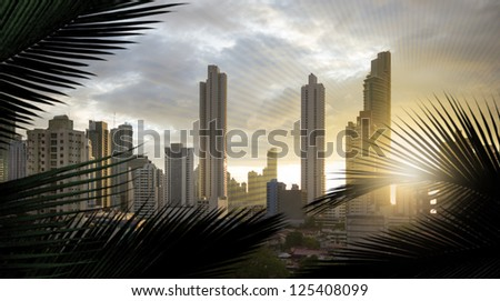 panoramic view of the skyscrapers of panama city, in central america,  with additional, slight sun lines, to adapt the similar form of the silhouettes of the palm leaves - stock photo
