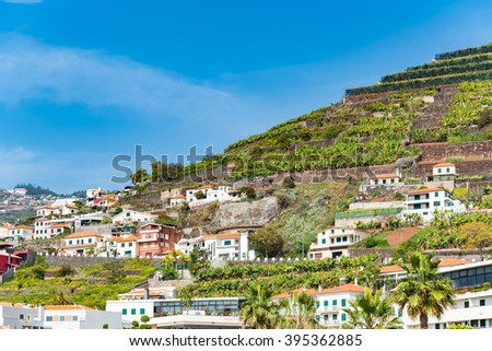 Panoramic view of tranquil hillside town  Landscape view of tranquil hillside, dotted with tropical foliage and Mediterranean style buildings on a bright summer day, image for travel business concept