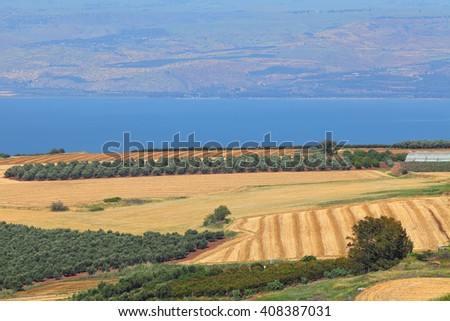 Panoramic view on agriculture valley Arbel. Green fields,arable lands,olive plantations and wheat harvesting fields. In the background Sea of Galilee -Tiberius lake.Low Galilee, Israel - stock photo