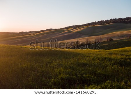 Panoramic view on field in Tuscan landscape colored by the setting sun - stock photo