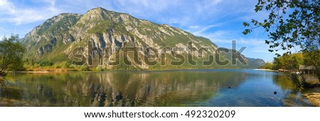 Panoramic view over the upper end of the Lake Bohinj (Wocheiner See) in the national park Triglav / Slovenia