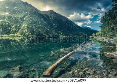 Panoramic vista over wilderness in high mountains in Poland. Toned and colored image.