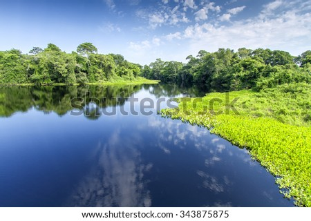 Pantanal - The Brazilian wetlands - stock photo
