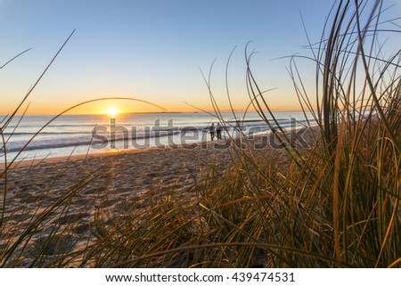 Papamoa beach, through the marram beach grass looking into sunrise with two small unidentifiable walkers in distance.
